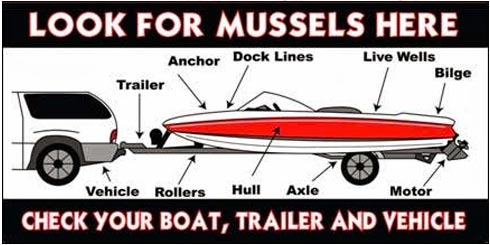 Diagram of places on your boat to check for zebra mussels
